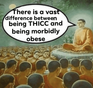Still like both tho: There is a vast  difference between  being THICC and  being morbidly  obese Still like both tho