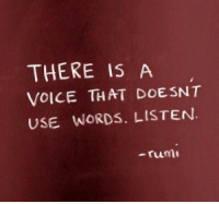 Voice, Rum, and Words: THERE IS A  VOICE THAT DOESNT  USE WORDS. LISTEN  -rum