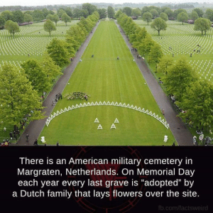 "DV6: There is an American military cemetery in  Margraten, Netherlands. On Memorial Day  each year every last grave is ""adopted"" by  a Dutch family that lays flowers over the site  fb.com/factsweird DV6"