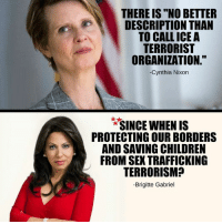 """Children, Memes, and Sex: THERE IS """"NO BETTER  DESCRIPTION THAN  TO CALL ICE A  TERRORIST  ORGANIZATION.""""  Cynthia Nixon  *""""SINCE WHEN IS  PROTECTING OUR BORDERS  AND SAVING CHILDREN  FROM SEX TRAFFICKING  TERRORISM?  -Brigitte Gabriel"""