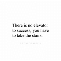 Memes, Time, and Success: There is no elevator  to success, you have  to take the stairs.  MOTIVATIONMAFIA Success doesn't happen in one press of a button. It happens one step at a time.