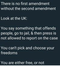 (GC): There is no first amendment  without the second amendment  Look at the UK:  You say something that offends  people, go to jail, & then press is  not allowed to report on the case  You can't pick and choose your  freedoms  You are either free, or not (GC)