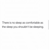 Comfortable, Memes, and True: There is no sleep as comfortable as  the sleep you shouldn't be sleeping. True!