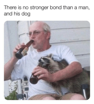 Dank, Lean, and Memes: There is no stronger bond than a man,  and his dog  @lean in my.cerea A true companion by CopiousConcept MORE MEMES
