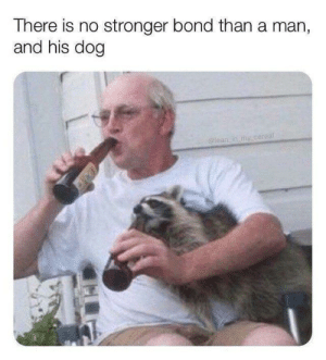 There is no stronger bond than a man, and his cat: There is no stronger bond than a man, and his cat