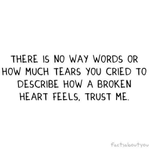 broken heart: THERE IS NO WAY WORDS OR  HOW MUCH TEARS YOU CRIED TO  DESCRIBE HOW A BROKEN  HEART FEELS, TRUST ME  factsaboutyou