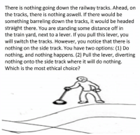 Trolley, Switch, and Ethics: There is nothing going down the railway tracks. Ahead, on  the tracks, there is nothing aswell. If there would be  something barreling down the tracks, it would be headed  straight there. You are standing some distance off in  the train yard, next to a lever. If you pull this lever, you  will switch the tracks. However, you notice that there is  nothing on the side track. You have two options: (1) Do  nothing, and nothing happens. (2) Pull the lever, diverting  nothing onto the side track where it will do nothing.  Which is the most ethical choice? magnum opus