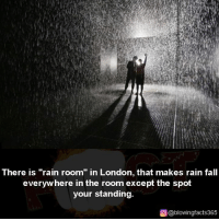 "Fall, Memes, and London: There is ""rain room"" in London, that makes rain fall  everyw here in the room except the spot  your standing.  ρ@blowingfacts365"