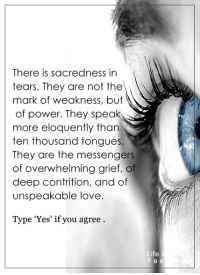 Memes, Messenger, and Grief: There is sacredness in  tears. They are not the  mark of weakness, but  of power. They speak  more eloquently than  ten thousand tongue  They are the messengers  of overwhelming grief, of  deep contrition, and of  unspeakable love.  Type 'Yes' if you agree  Life  Fee <3