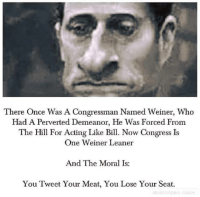 Memes, Morality, and The Hills: There Once Was A Congressman Named Weiner, Who  Had A Perverted Demeanor, He was Forced From  The Hill For Acting Like Bill. Now Congress Is  One Weiner Leaner  And The Moral Is  You Tweet Your Meat, You Lose Your Seat.