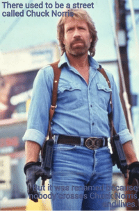 """Chuck Norris, Memes, and Cross: There used to be a street  called Chuck Norri  ut it Was rename baca  Ise  od Crosses Chuck Norr  IVeS We like Chuck Norris memes...so we're sharing this one from 'Chuck Norris Memes.' """"There used to be a street called Chuck Norris But is was renamed  because nobody crosses Chuck Norris."""" #YoMamaYoGrammar #WeDescribeForTheBlind #GrammarNinjas https://www.facebook.com/ChuckNorrisFactsAndMemes/photos/basw.Abq_9ROr1Ebt5G_unZ3JCRt5TaIAJFNSL4fRe7THK968prr_KtcuIzW7DGTKGf7vRBQ3QDAz_Uirs3-QKBnUkaktbz0F_V0Q0SCm8ieCWopKjWAjSwsMUzl1-XiUsGpXjhIqCYLvjB4AWsgpWpWKj-kg.249047851942689.1648774645359714.246808748833266.905635639561971.265952183585589.828633933903217/905635639561971/?type=1&theater"""