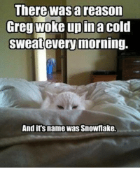 cold sweats: There was a reason  Greg woke up ina cold  sweat every morning  And it's name was Snowflake.
