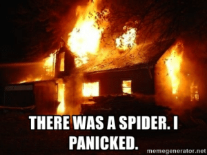 Spider House Fire