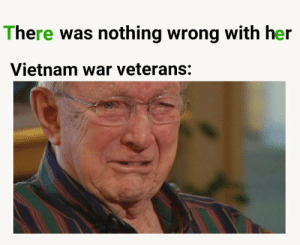 Lost, Vietnam, and Vietnam War: There was nothing wrong with her  Vietnam war veterans: They lost the war right?