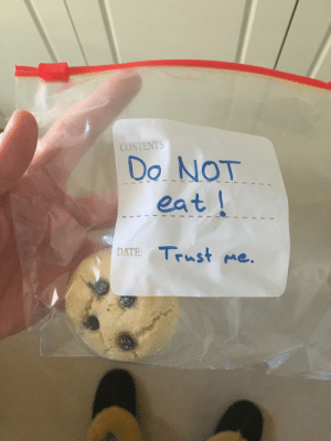 There were two edibles in here last night. Someone in my family is having an interesting day…: There were two edibles in here last night. Someone in my family is having an interesting day…