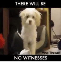 thread: THERE WILL BE  Viral Thread  NO WITNESSES