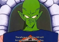 Happy Piccolo day everyone :^): Therefore every May 9th will  be celebrated as piccolo Day, Happy Piccolo day everyone :^)