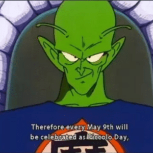Reddit, Break, and Happy: Therefore every May 9th will  be celebrated as Riecolo Day Happy Holidays fellas. Break a Rice Cooker