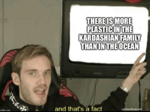 Family, Kardashian, and Ocean: THEREIS MORE  PLASTIC IN THE  KARDASHIAN FAMILY  THAN IN THE OCEAN  56  u/CobaltShadow63  and that's a fact  mofin.com It is thou