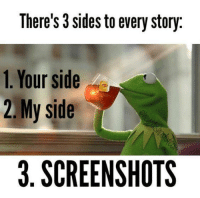 My Sides: There's 3 sides to every story.  1. Your side  2 My side  3. SCREENSHOTS