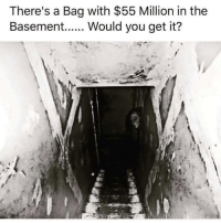 Dank, 🤖, and Get It: There's a Bag with $55 Million in the  Basement  Would you get it?