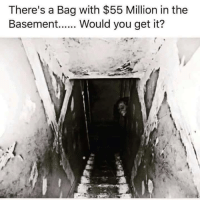 Memes, 🤖, and Get It: There's a Bag with $55 Million in the  Basement  Would you get it?