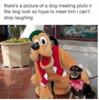 Hype, Pluto, and Smile: there's a picture of a dog meeting pluto n  the dog look so hype to meet him i can't  stop laughing The huge smile tho!😊😊😊👍👍👍