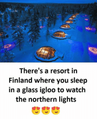 Follow our own - @sadcasm.co: There's a resort in  Finland where you sleep  in a glass igloo to watch  the northern light:s Follow our own - @sadcasm.co