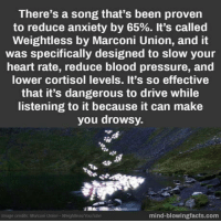 Pressure, Anxiety, and Blood Pressure: There's a song that's been proven  to reduce anxiety by 65%. It's called  Weightless by Marconi Union, and it  was specifically designed to slow your  heart rate, reduce blood pressure, and  lower cortisol levels. It's so effective  that it's dangerous to drive while  listening to it because it can make  you drowsy  image credits Marconi Union-WeightlessYou Tube  mind-blowingfacts.com For people with anxiety this song did wonders for me