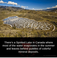 Out Of This World.: There's a Spotted Lake in Canada where  most of the water evaporates in the summer  and leaves behind puddles of colorful  mineral deposits.  fb.com/fact  Weird Out Of This World.