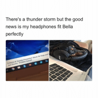 "Dogs, Memes, and Music: There's a thunder storm but the good  news is my headphones fit Bella  perfectly  Hours of 'Anxiety Prevention"" Music for Dogs and  and Storms Problem Solved! This is genius.. 🤔😂🐶 https://t.co/m0RXAdCZoS"