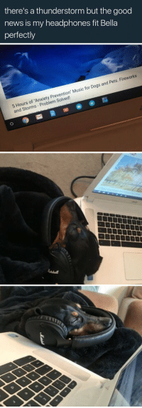 "Dogs, Funny, and Music: there's a thunderstorm but the good  news is my headphones fit Bella  perfectly   5 Hours of 'Anxiety Prevention"" Music for Dogs and Pets. Fireworks  and Storms - Problem Solved! This is the best thing I've seen today https://t.co/2NXjFDPHaJ"