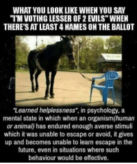 """Aversion: THERE'S AT LEAST 4 NAMES ON THE BALLOT  """"Learned helplessness"""", in psychology, a  mental state in which when an organism(human  or anima) has endured enough averse stimuli  which it was unable to escape or avoid, it gives  up and becomes unable to learn escape in the  future, even in situations where such  behaviour would be effective."""