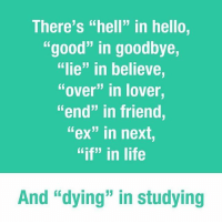 "Memes, 🤖, and Next: There's ""hell"" in hello,  ""good"" in goodbye,  ""lie"" in believe  ""over"" in lover  end"" in friend  ""ex"" in next  ""if"" in life  And ""dying"" in studying The truth has been spoken. Follow @9gag StuDying"