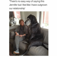 @hilarious.ted is my favorite animal memes page of all time: There's no easy way of saying this  Jennifer but I feel like l have outgrown  our relationship' @hilarious.ted is my favorite animal memes page of all time