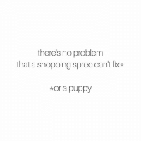 Memes, Shopping, and Nordstrom: there's no problem  that a shopping spree can't fix*  *or a puppy If you need me, you can find me @nordstrom with my new puppy. sponsored