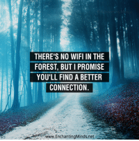 Memes, Wifi, and 🤖: THERE'S NO WIFI IN THE  FOREST, BUT I PROMISE  YOU'LL FIND A BETTER  CONNECTION  www.EnchantingMinds.net