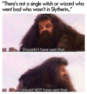 """Bad, Slytherin, and Single: """"There's not a single witch or wizard who  went bad who wasn't in Slytherin..""""  Shouldn't have said that  should NOT have said that Add it to the list of things Hagrid should not have said"""