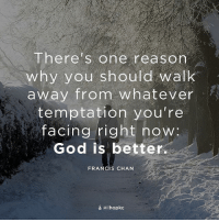 """God, Memes, and Living: There's one reason  why you should walk  away from whatever  temptation you're  facing right now:  God is better.  FRANCIS CHAN  a ihopkc """"You open Your hand and satisfy the desire of every living thing"""" (Ps. 145:16). repost from @ihopkc familyonmission restoredmarriage restoredfamily staywiththefather bemore"""