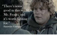 "Memes, Good, and World: ""There's some  good in this world  Mr. Frodo, and  it's worth fighting  for.  29  -Samwise Gamgee"