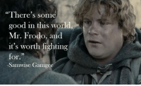 "Memes, 🤖, and Samwise Gamgee: ""There's some  good in this world,  Mr. Frodo, and  it's worth fighting  for.  -Samwise Gamgee"