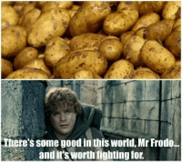 Memes, 🤖, and Worth Fighting For: There's some good in this World, Mr Frodo...  and it's worth fighting for.