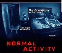 Normal, The Room, and Room: There's something  in the room !!  I want to pee  Motherfucker  3:08:26AM  NORMAL  ACTIVITY
