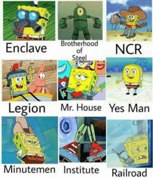 House, Yes, and Steel: therhood NCR  Enclave brotherhood  of  Steel  Legion Mr. House Yes Man  Minutemen Institute Railroad Sounds about right