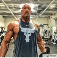 """Memes, Paradise, and West Coast: therock Who you looking at? Repost from @therock Mornin' raise of the 'brow from my new (yet still dirty) West Coast Iron Paradise. We're doin' that 4am anchor thing again to close out the week strong. Shooting one big final additional scene for Hobbs and FAST & FURIOUS today. Bad ass Hobbs scene, so it'll be fun. I'll wrap that out this afternoon then switch gears, energy, tempo and definitely wardrobe;), to shoot BALLERS tonight. It's kinda crazy but in order for me to operate at a highly efficient-effective level, I need that 4am wake up to train like an beast. It's one of my anchors. Even at this """"what the f*ck are you thinking at this stupid hour of 4am"""". Buuuuut remember it's the fun crazy ones that dent the universe. Find your anchor. Get crazy. Dent it. 4am WestCoastIronParadise DentingInProgress"""