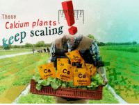 "<p>[<a href=""https://www.reddit.com/r/surrealmemes/comments/89e9ov/for_your_eye_eyes/"">Src</a>]</p>: These  1/8  7/8  Calcium plants!  scaling  1/  3/4  1  keep  0  20  Calean  20  W 1.480 in  H 1.501 in  20  W:1:056  H: 1.056 in  ca Ca 20  ColdlurCa  Calcium  40.078  Calcium  40.078 <p>[<a href=""https://www.reddit.com/r/surrealmemes/comments/89e9ov/for_your_eye_eyes/"">Src</a>]</p>"