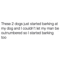 Dogs, Funny, and Lmao: These 2 dogs just started barking at  my dog and I couldn't let my man be  outnumbered so l started barking  too LMAO! Gotta back up your doggo! 🐶 https://t.co/lqD0Z3Kkfw