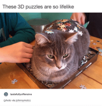 These 3D puzzles are so lifelike  to  tastefully offensive  (photo via johnnymoto)