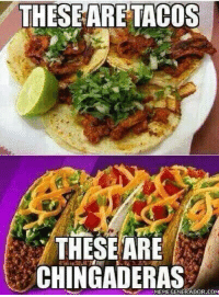 Street Tacos> Taco Bell: THESE ARE TACOS  THESE ARE  CHINGADERAS Street Tacos> Taco Bell