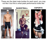 Ideal Male Body: These are the ideal male bodies for each sport, you may  not like it but this is what peak performance looks like  SWIMMING  BASKETBALL  ESPORTS  do  © AP